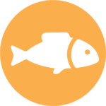 yellow illustration of fish