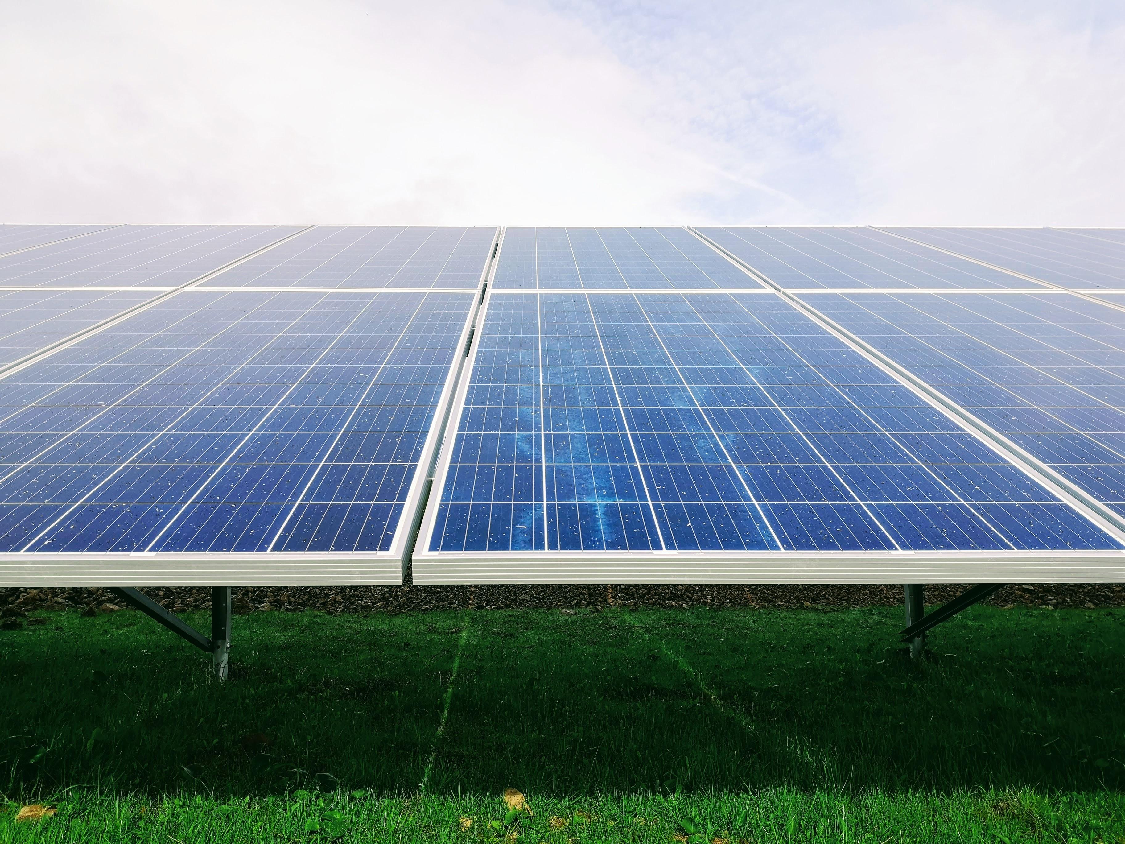 Blue solar panels sitting on grass