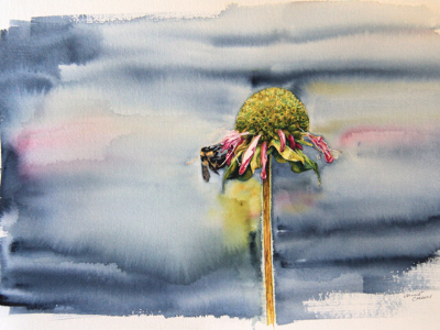 Watercolour painting of bumble bee on flower