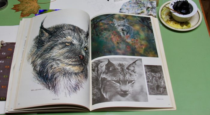 Doug Lindstrand Alaskan Sketchbook on lynx page