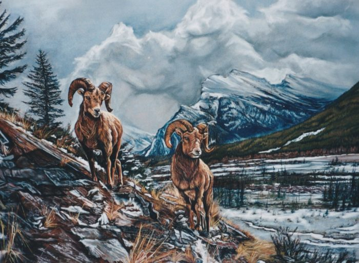 Pastel drawing of two big horn sheep surround by nature