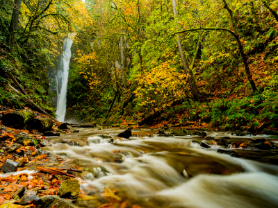 River and waterfall in autumn forest with waterfall