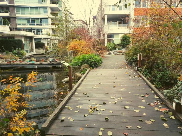 Bridge over pond near apartment buildings