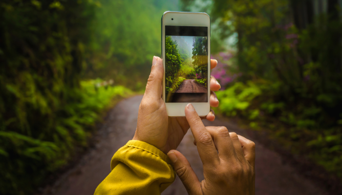 Person with yellow sleeve taking picture with phone down forest path