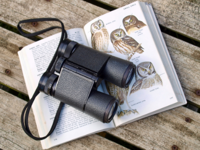 Birding binoculars on owl book