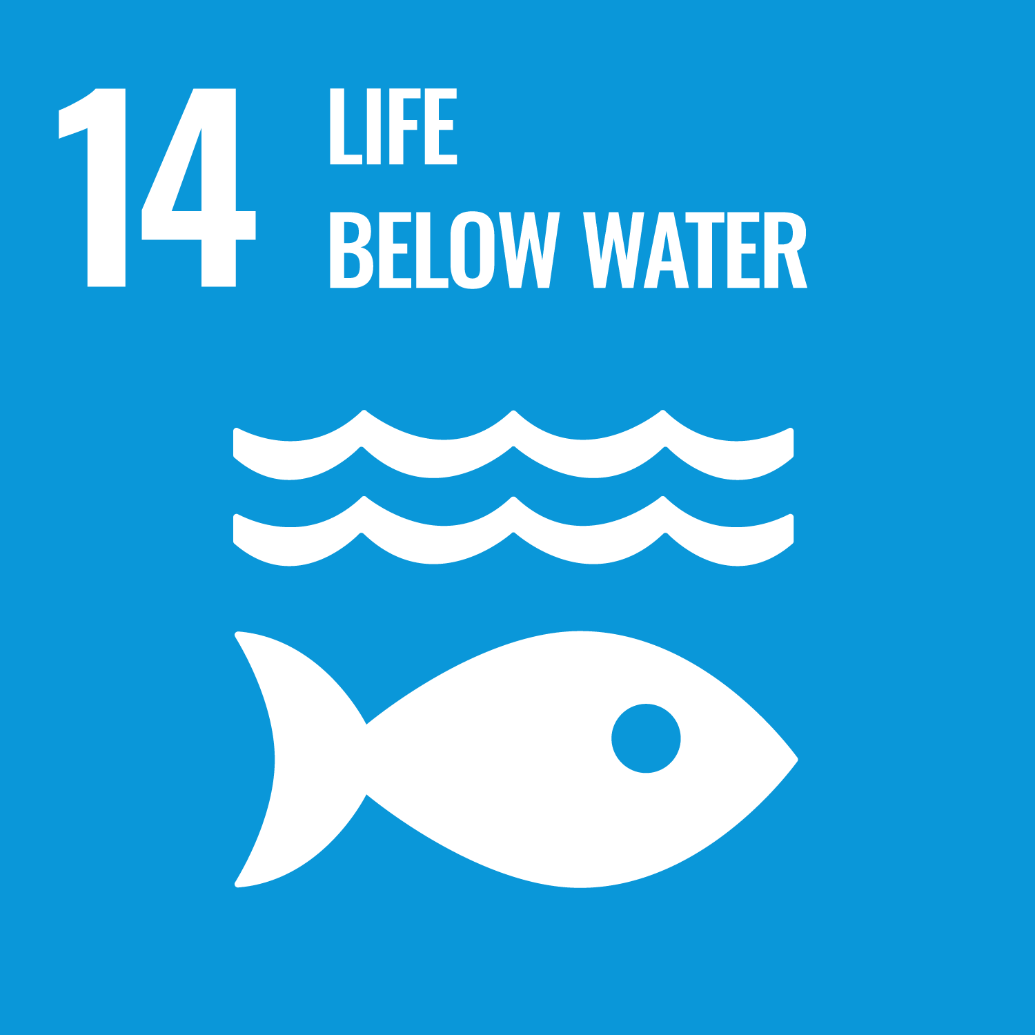 Sustainable Development Goal 14