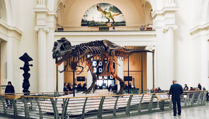 The Field Museum with T Rex