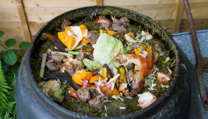 Compost bin filled with kitchen scraps