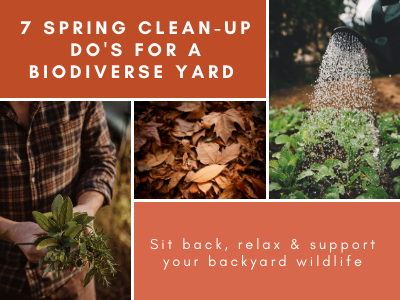 Spring is Coming: 7 clean up do's for a biodiverse yard