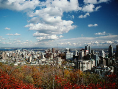 City in Canada with forest
