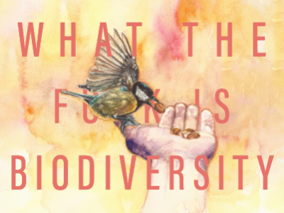 What the f**k is biodiversity podcast artwork with bird in hand